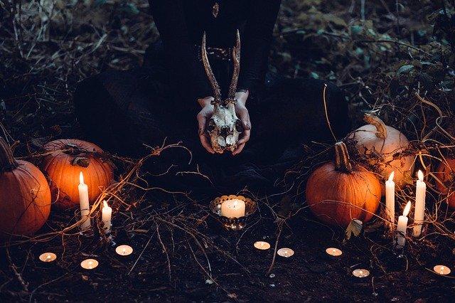 décorer jardin haloween