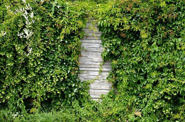décorer mur de jardin